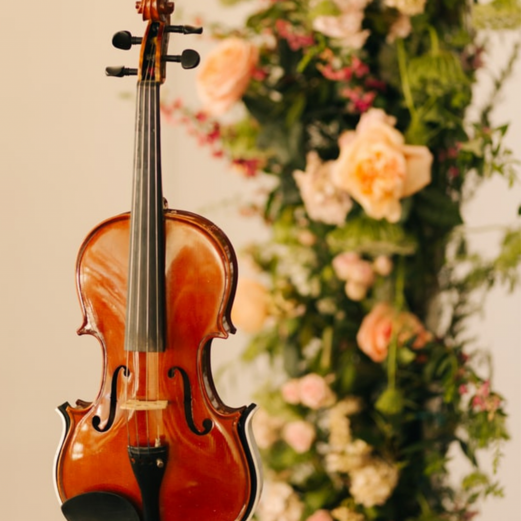 Violin and vase of flowers
